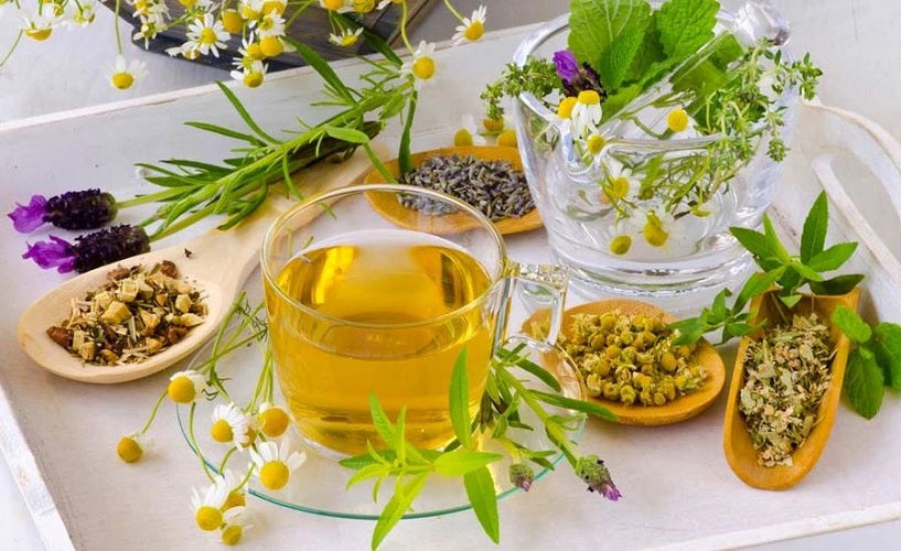 Top 10 Herbs & Supplements for Endometriosis