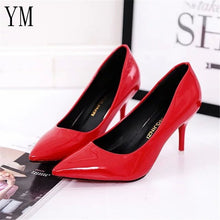 Pointed Toe Pumps with High heels