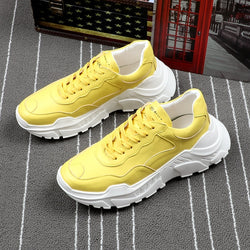 New Fashion Daddy Walking Shoes For Men