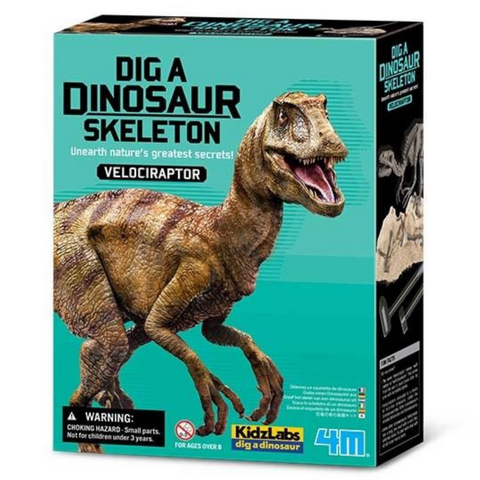 Velociraptor Skeleton Excavation Kit 4M