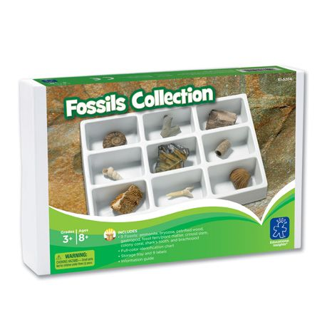 Learning Resources Fossils Collection