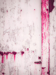 Pink Wall by Barbara Vandendriessche Art Print