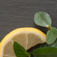 Load image into Gallery viewer, Eucalyptus, Lemon