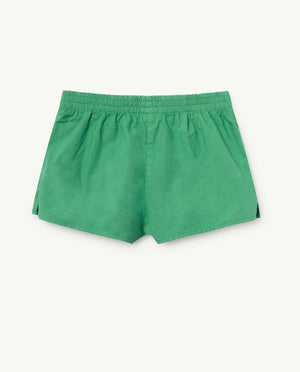 Spider Shorts Green