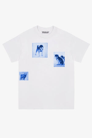 FRAME - DREAMLAND SYNDICATE Dogs T-Shirt