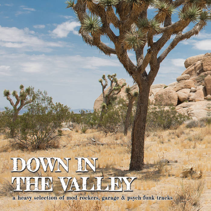 "Selectshop FRAME - FRAME MUSIC VA: ""Down In The Valley"" LP Vinyl Record Dubai"