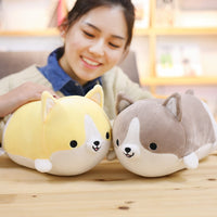 Cute Corgi Dog Plush Pill