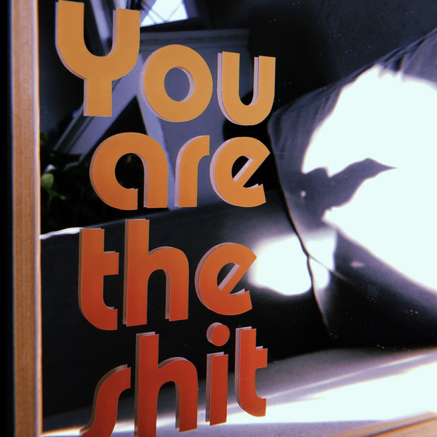 """""""You Are the Shit"""" decal sticker 1"""