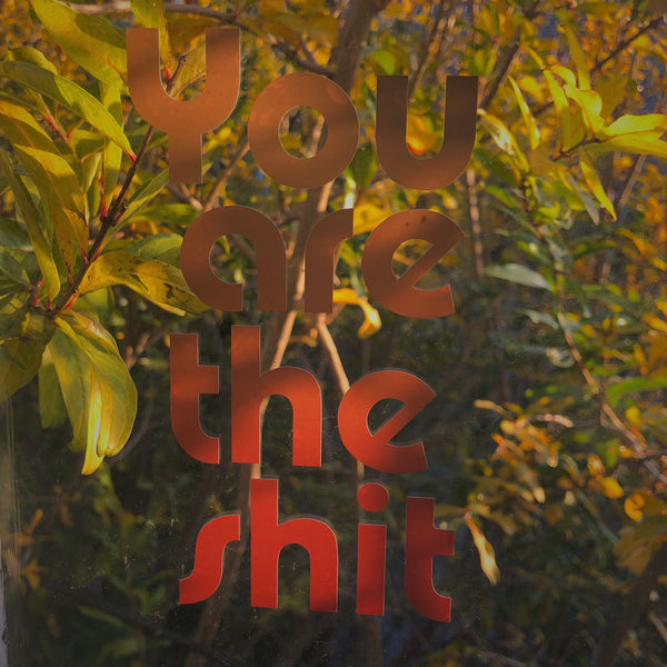 """You Are the Shit"" decal sticker"