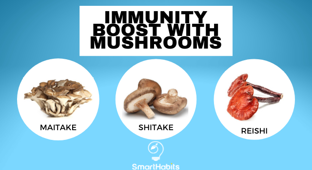 Healing Mushrooms: Nature's Way to Boost Your Immune System