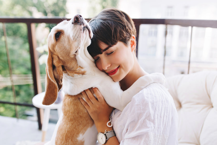 5 Signs of Puppy Love