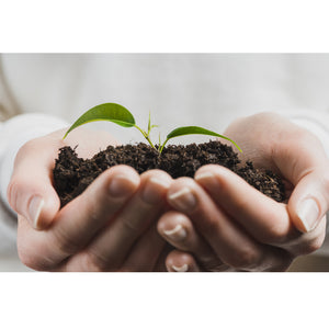 Soil degradation is linked to conventional agriculture