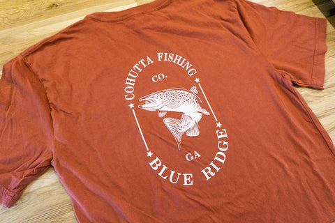 Blue Ridge Brown Tee