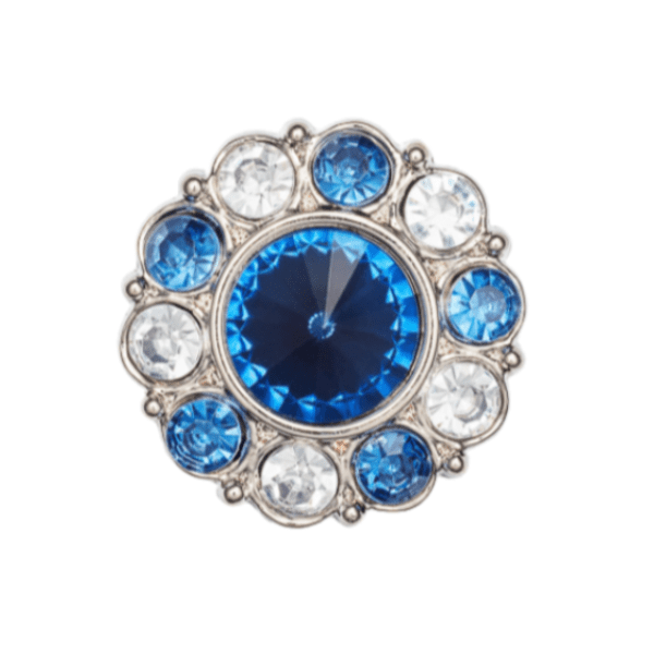 Sapphire and Diamond Flower Gemstone Gift Box Closure