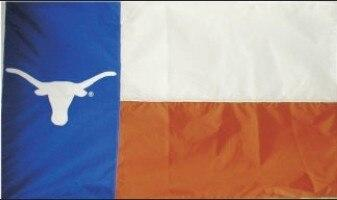 Texas Longhorn Applique 3x5 State Style Flag