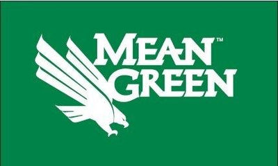 University of North Texas Mean Green Eagle 3x5 Flag