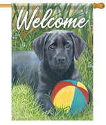 Beach Ball Pup House Flag