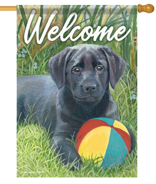 Beach Ball Pup House Flag - All Decorative Flags/Themes/Animal Flags/Dog and Cat Flags - I AmEricas Flags