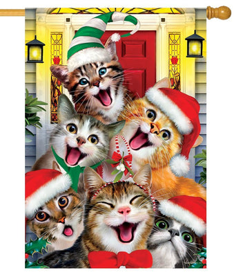 Cat Selfie for Christmas House Flag