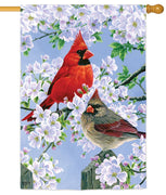 Glorious Morning Cardinals Suede Reflections House Flag