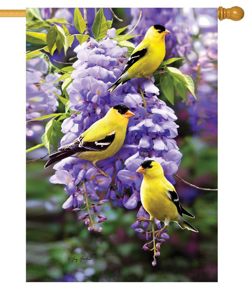Goldfinch Wisteria House Flag - I AmEricas Flags