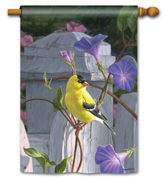 Morning Glory Finch House Flag