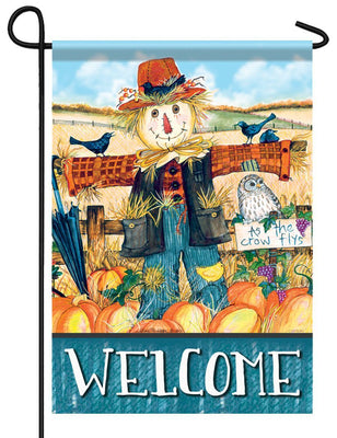 Mr. Scarecrow Welcome Garden Flag