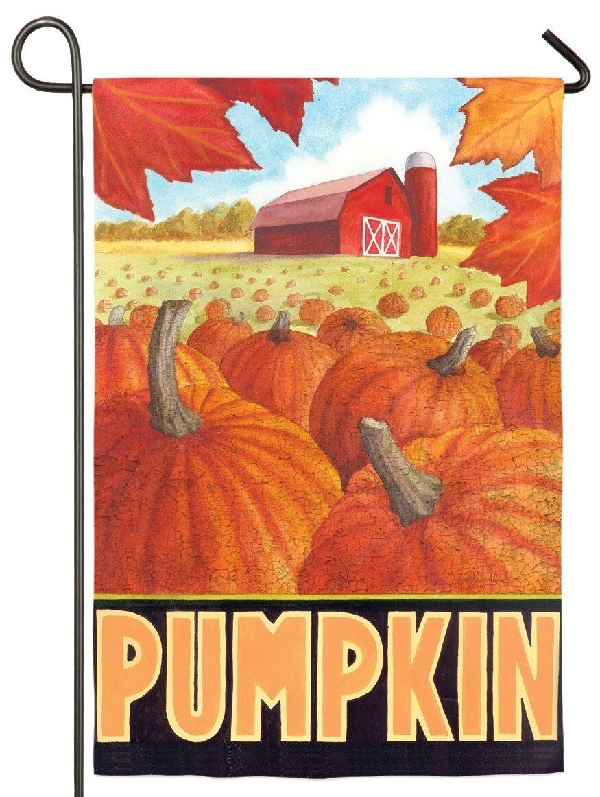 Pumpkin Farm Suede Reflections Garden Flag