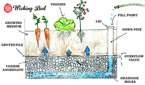 howto build a wicking garden bed