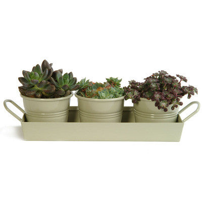 Kitchen Herb Pots