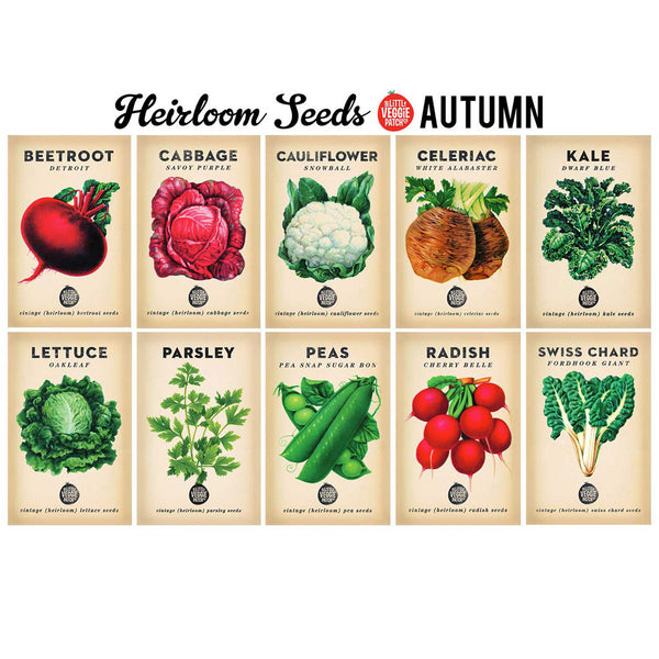 Seed Organiser and 10 Seasonal Seeds