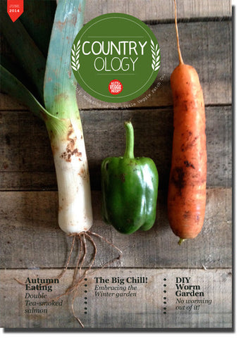 Little Veggie Patch Co's Digital Magazine - June 14