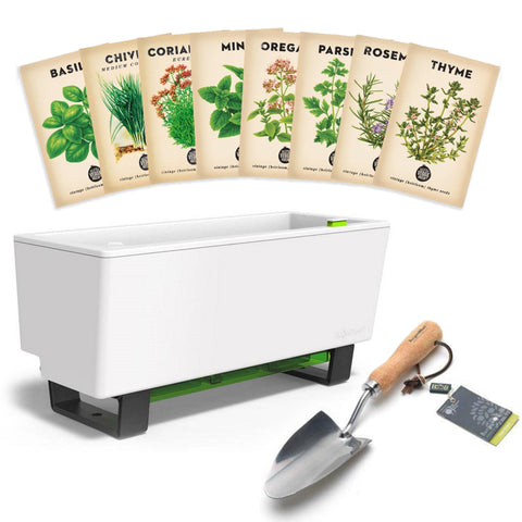 Glowpear Mini Bench + Culinary Herb Bundle + Hand Trowel