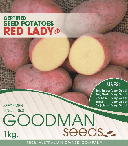 Red Lady Seed Potatoes