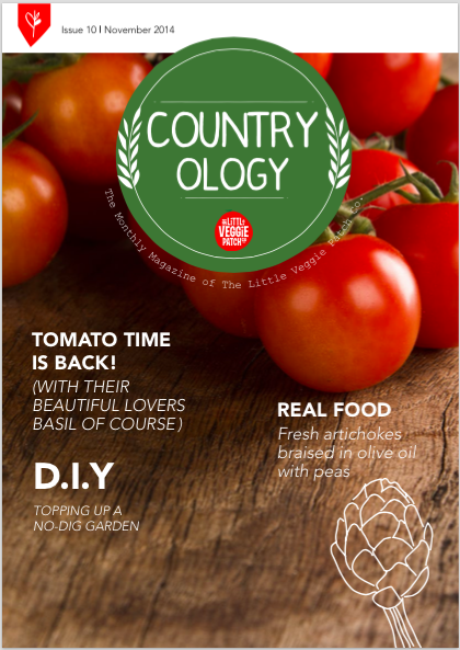 Little Veggie Patch Co's Digital Magazine - Nov 14