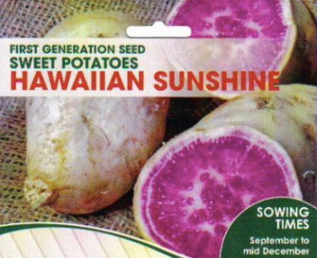 Sweet Potato Hawaiian Sunshine