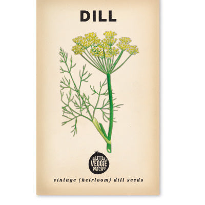 Dill 'Common' Heirloom Seeds