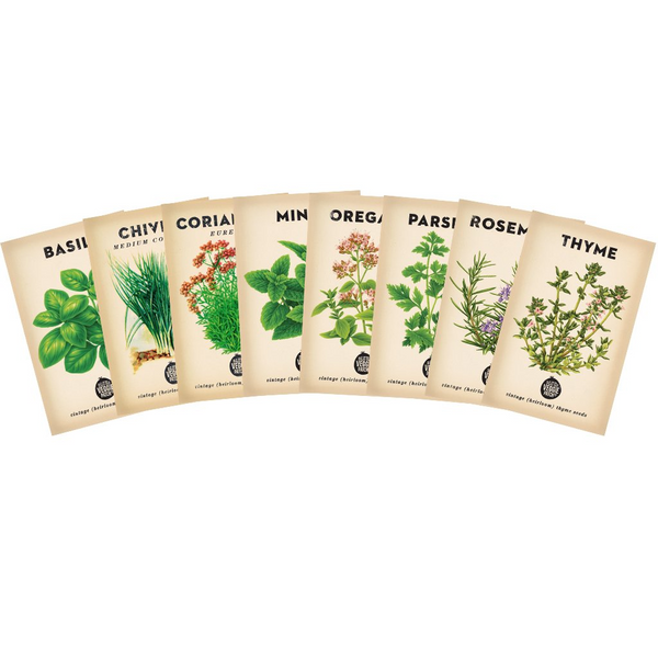 Culinary Herb Seed Bundle