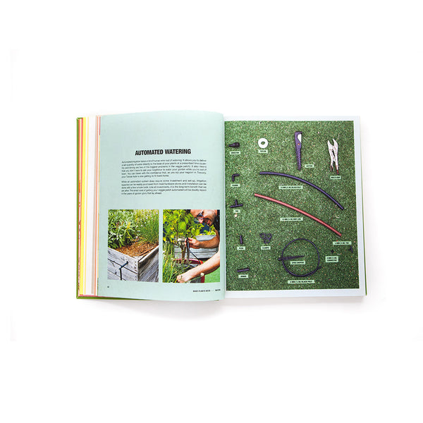 Grow Food Anywhere (advance copies)