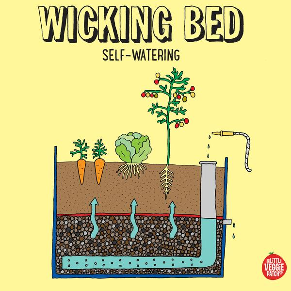Wicking Beds 101