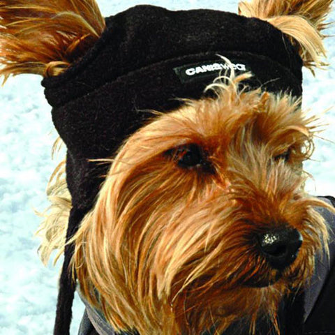 Alpin Dog Toque