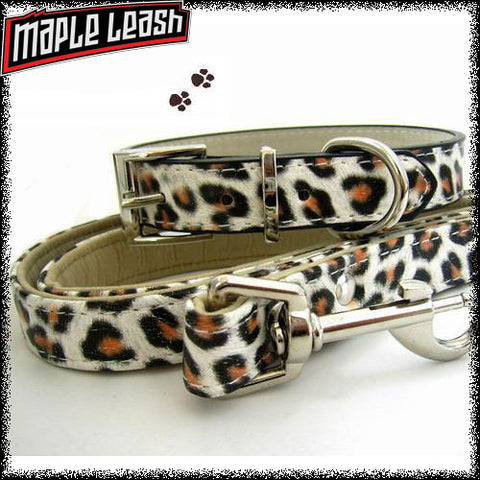 Jaguar Collar/Leash