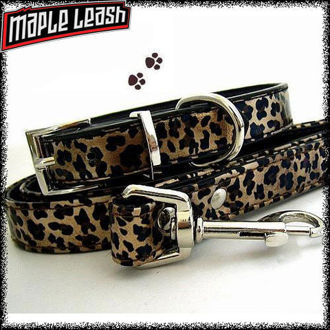 Leopard Collar/Leash