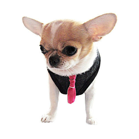 3in1 Dog Tie Harness