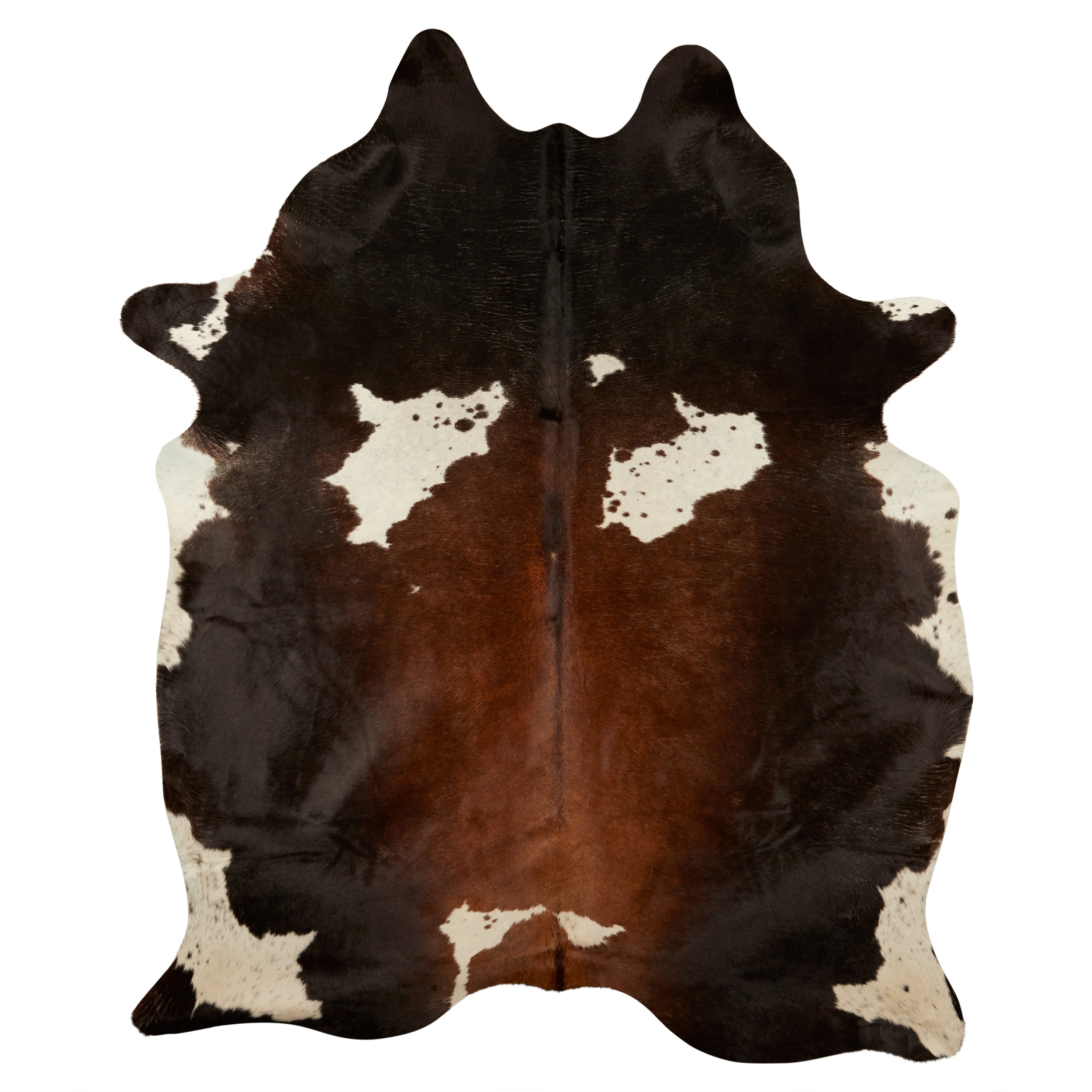 Luxe Hair-On Cowhide Rug - Tricolor