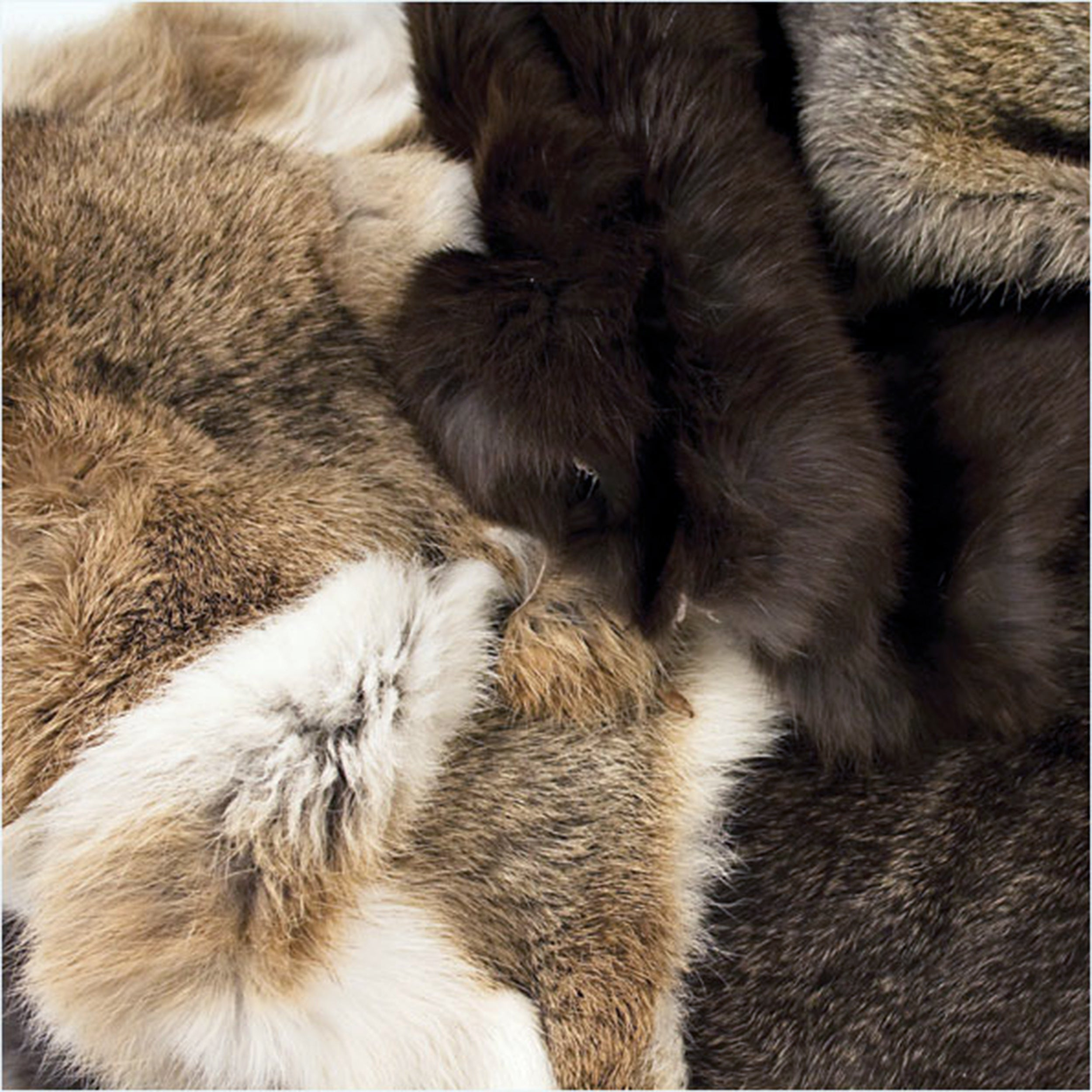 Rabbit Skins - Assorted