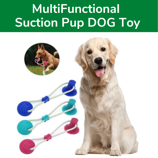 The Suction Cup Dog Tug Toy