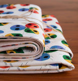 Colourful Blanket and Burp Cloths for Baby Boy or Girl, Ladybugs