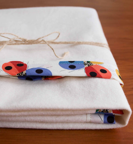 Cozy Flannel Blanket with Rainbow Ladybug Trim
