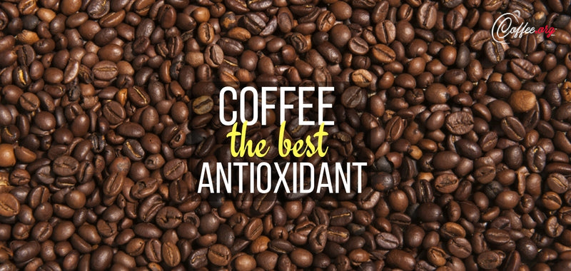 coffee as antioxident coffee beans shoponline coffee org
